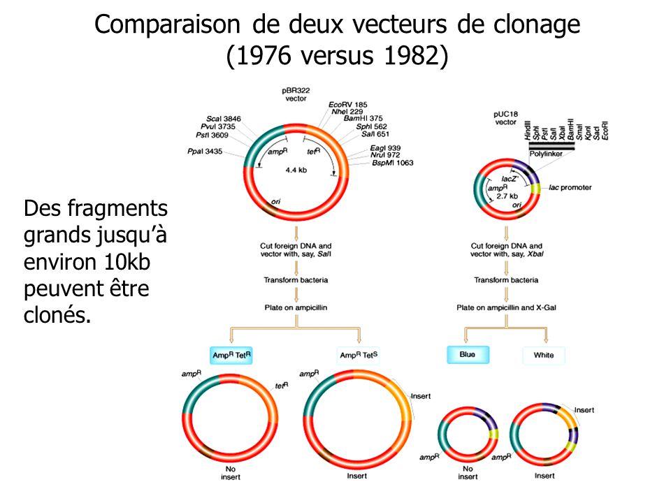 Comparaison de deux vecteurs de clonage (1976 versus 1982)