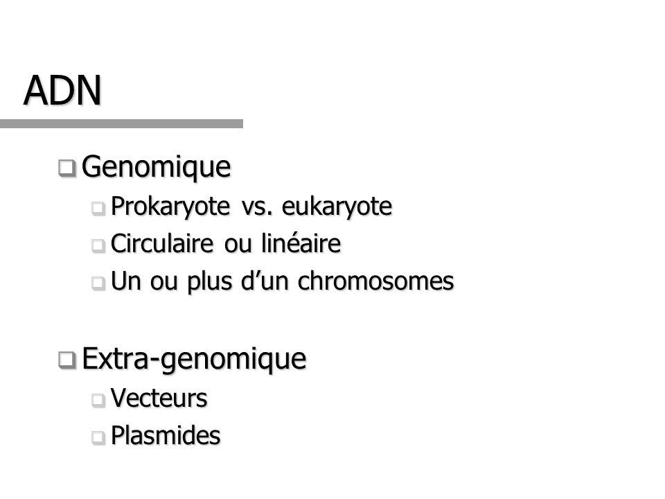 ADN Genomique Extra-genomique Prokaryote vs. eukaryote
