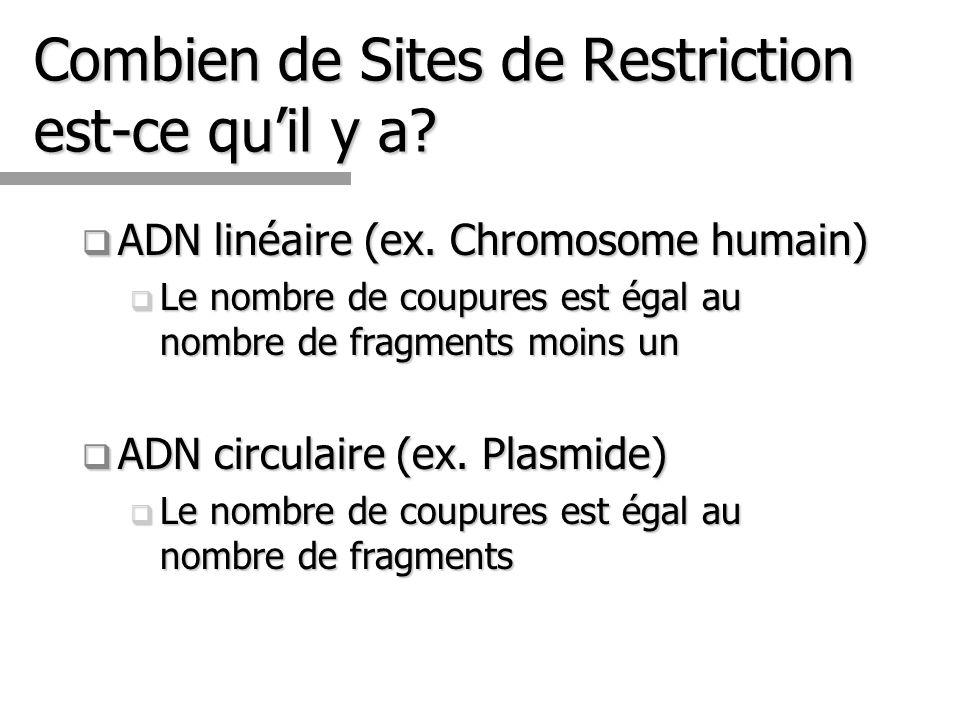Combien de Sites de Restriction est-ce qu'il y a