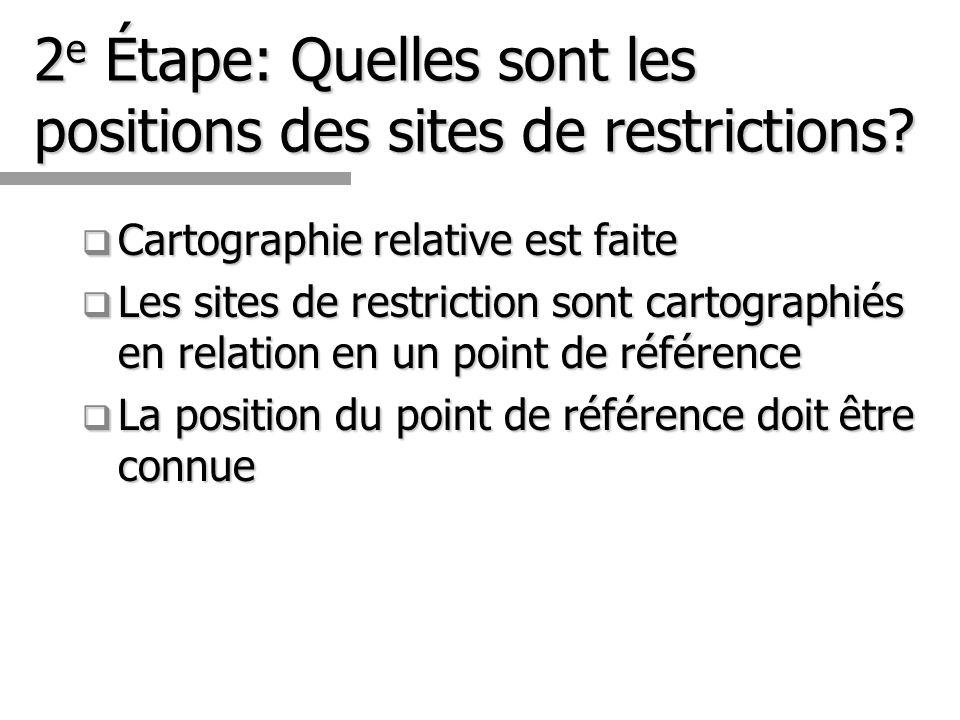 2e Étape: Quelles sont les positions des sites de restrictions