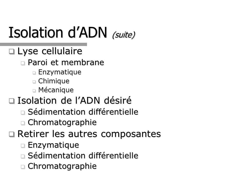 Isolation d'ADN (suite)
