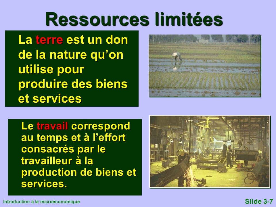 Ressources limitées La terre est un don de la nature qu'on utilise pour produire des biens et services.