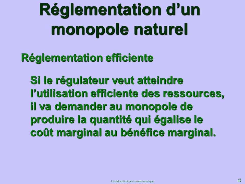 Réglementation d'un monopole naturel