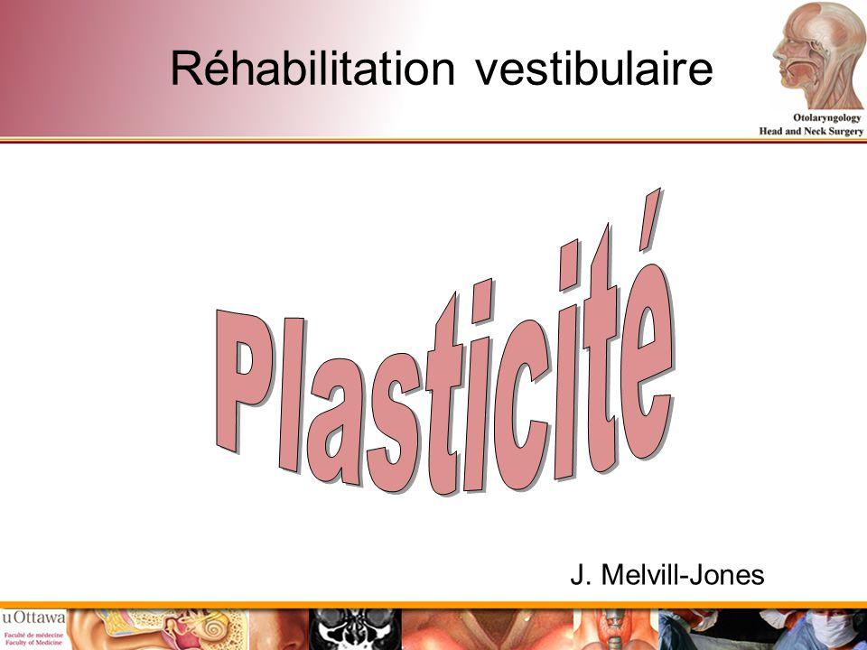 Réhabilitation vestibulaire