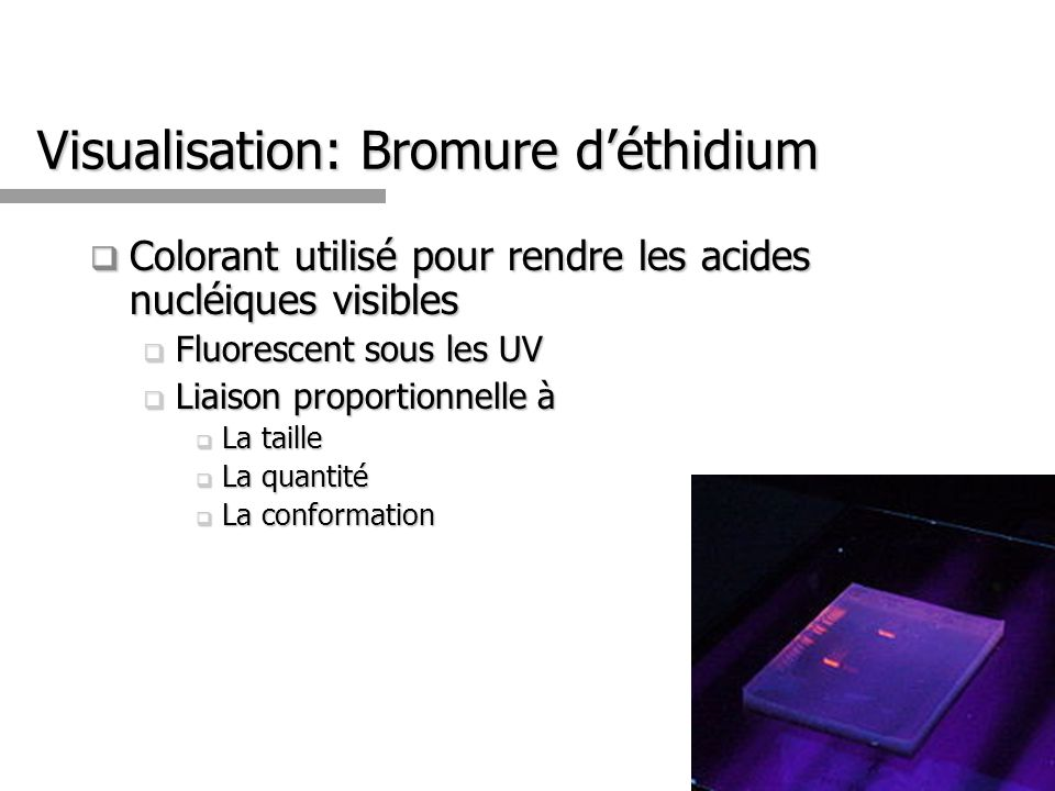 Visualisation: Bromure d'éthidium