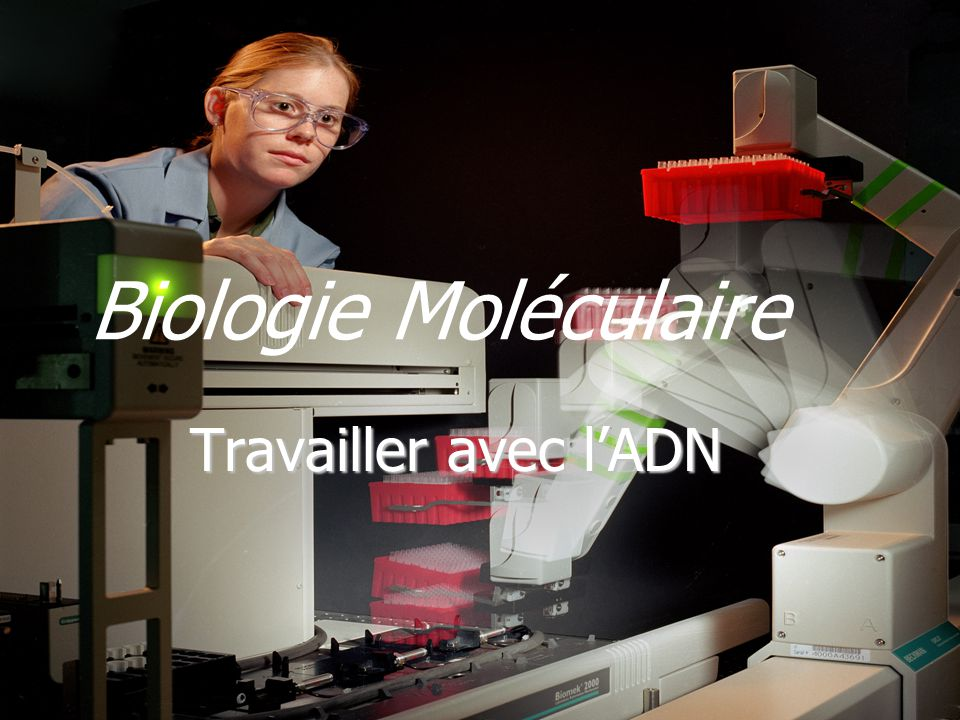 Biologie Moléculaire Travailler avec l'ADN