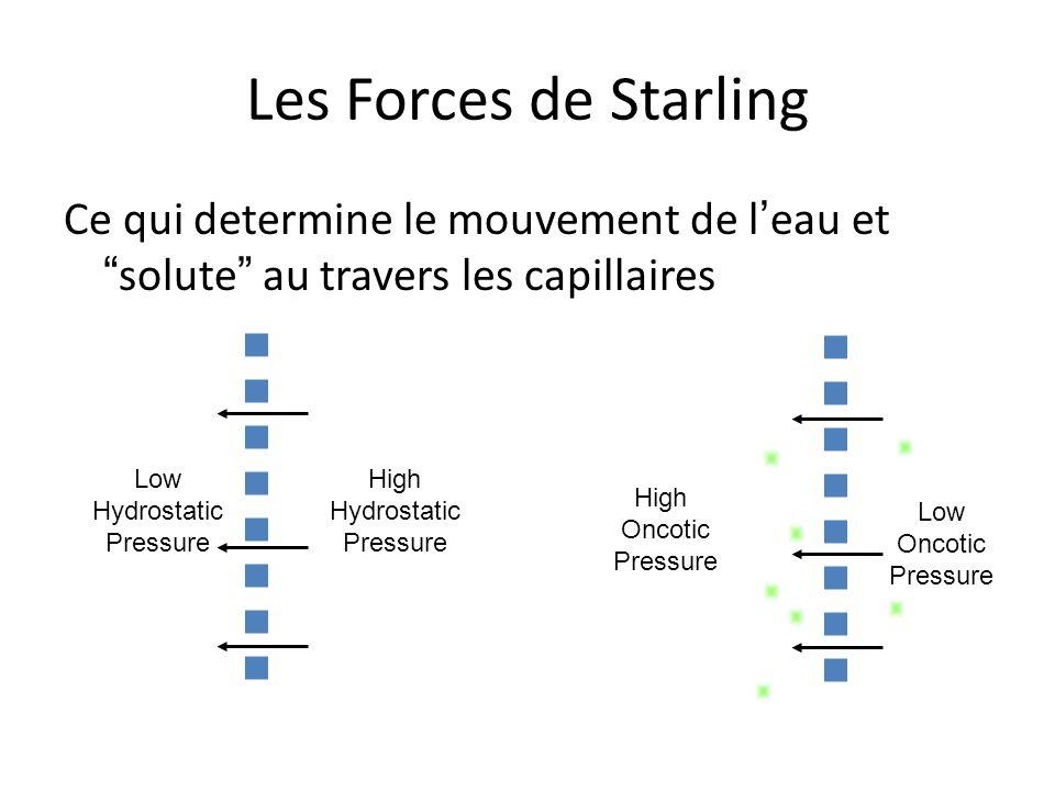Les Forces de Starling Ce qui determine le mouvement de l'eau et solute au travers les capillaires.