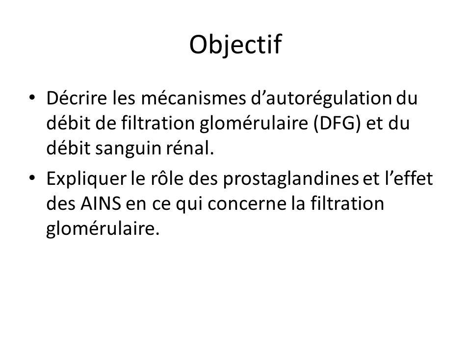 Objectif Décrire les mécanismes d'autorégulation du débit de filtration glomérulaire (DFG) et du débit sanguin rénal.