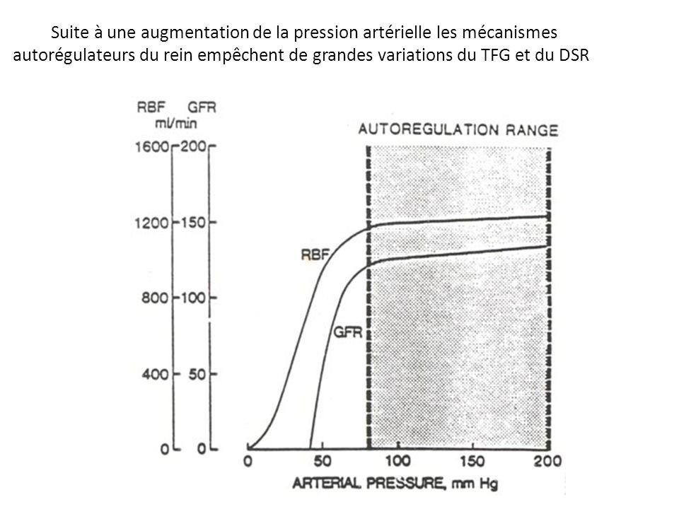Suite à une augmentation de la pression artérielle les mécanismes
