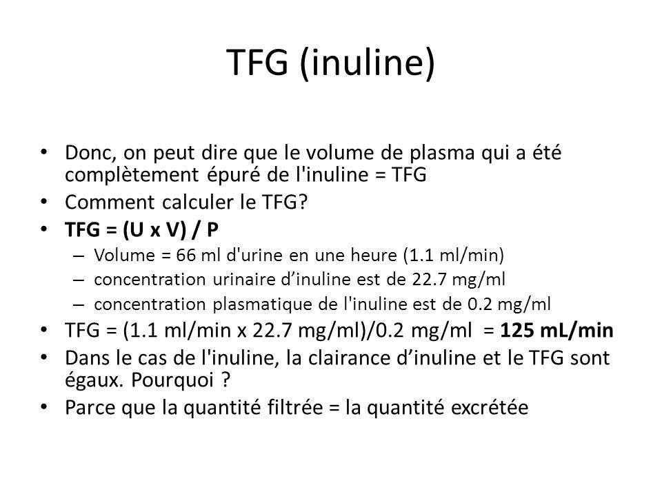 TFG (inuline) Donc, on peut dire que le volume de plasma qui a été complètement épuré de l inuline = TFG.