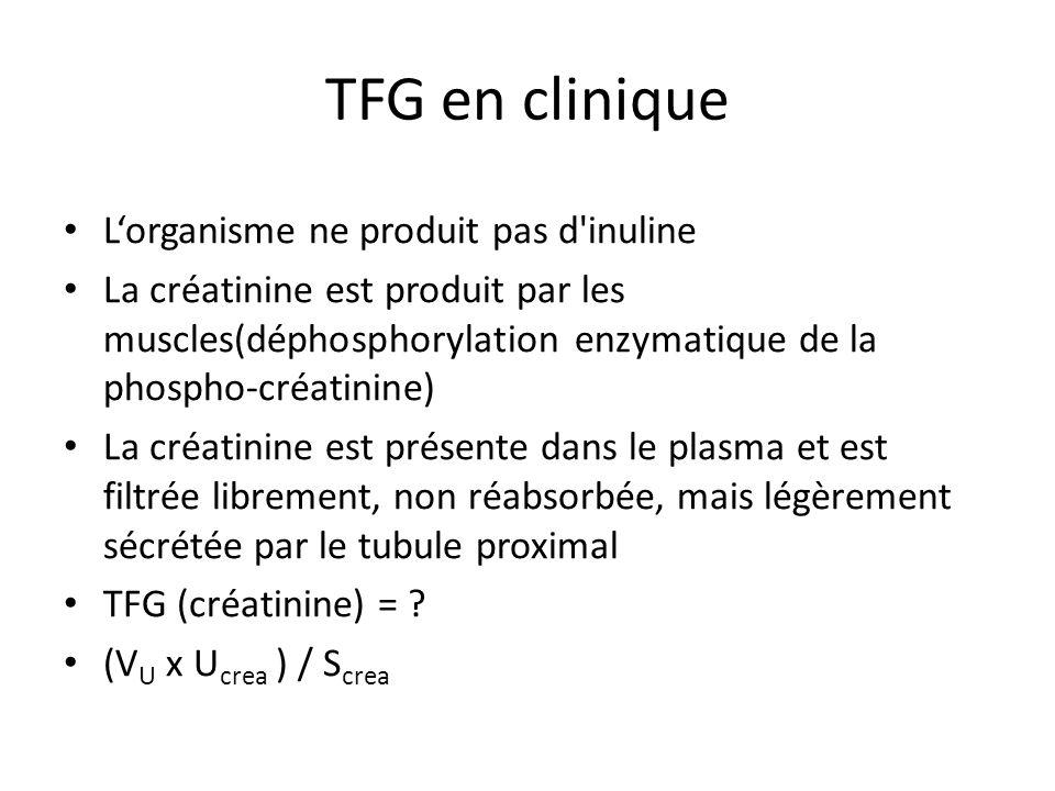 TFG en clinique L'organisme ne produit pas d inuline