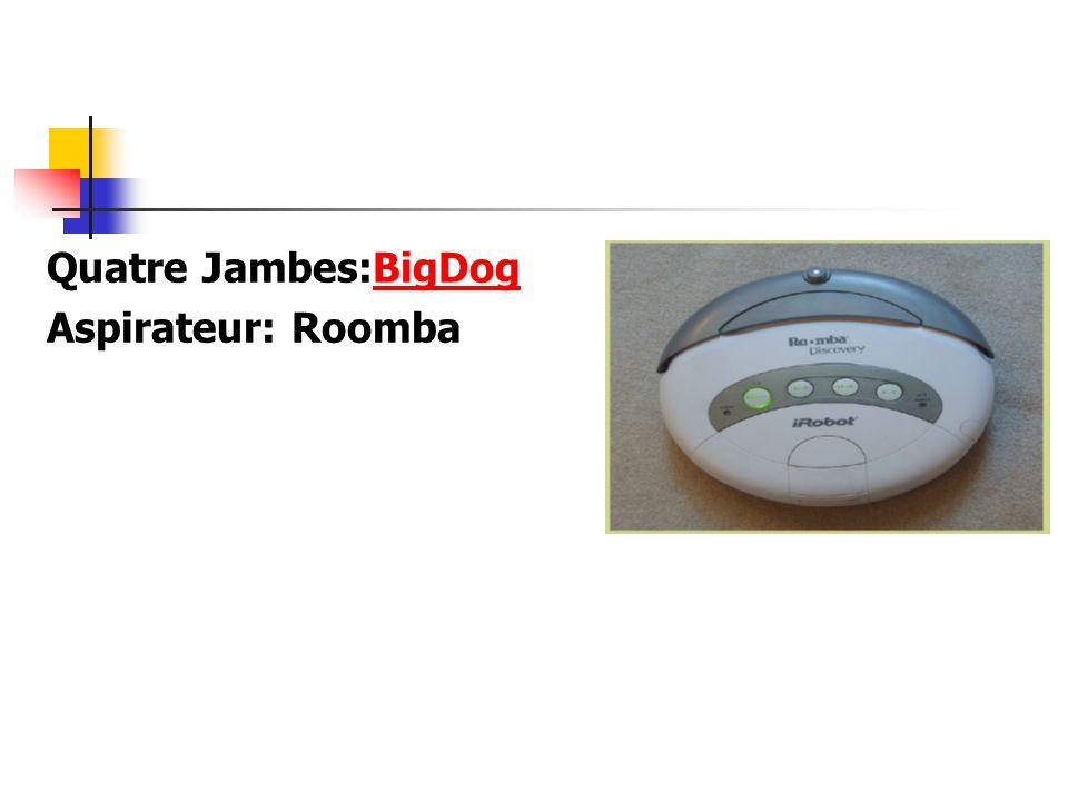 Quatre Jambes:BigDog Aspirateur: Roomba