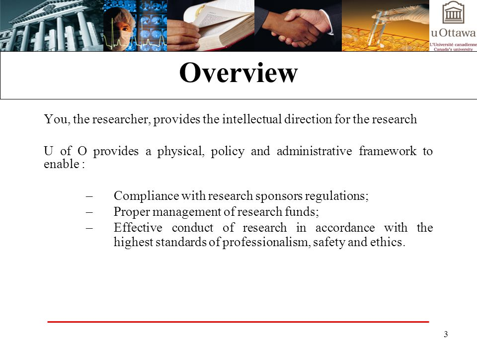Overview You, the researcher, provides the intellectual direction for the research.
