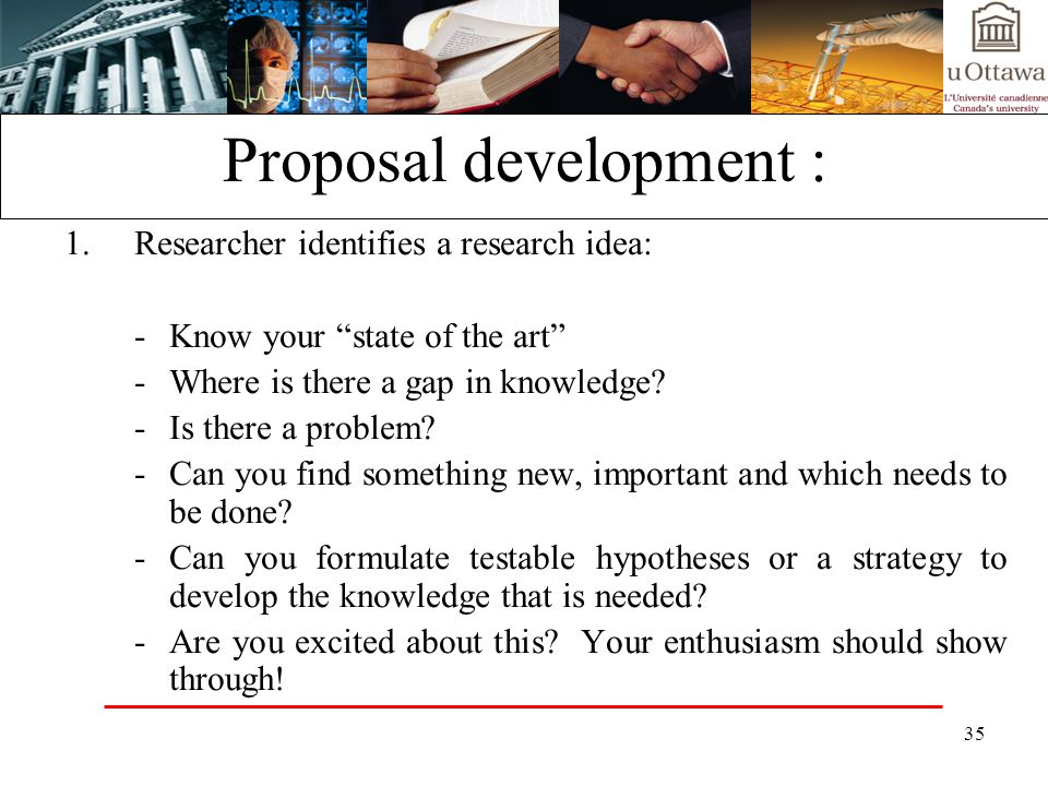 Proposal development :