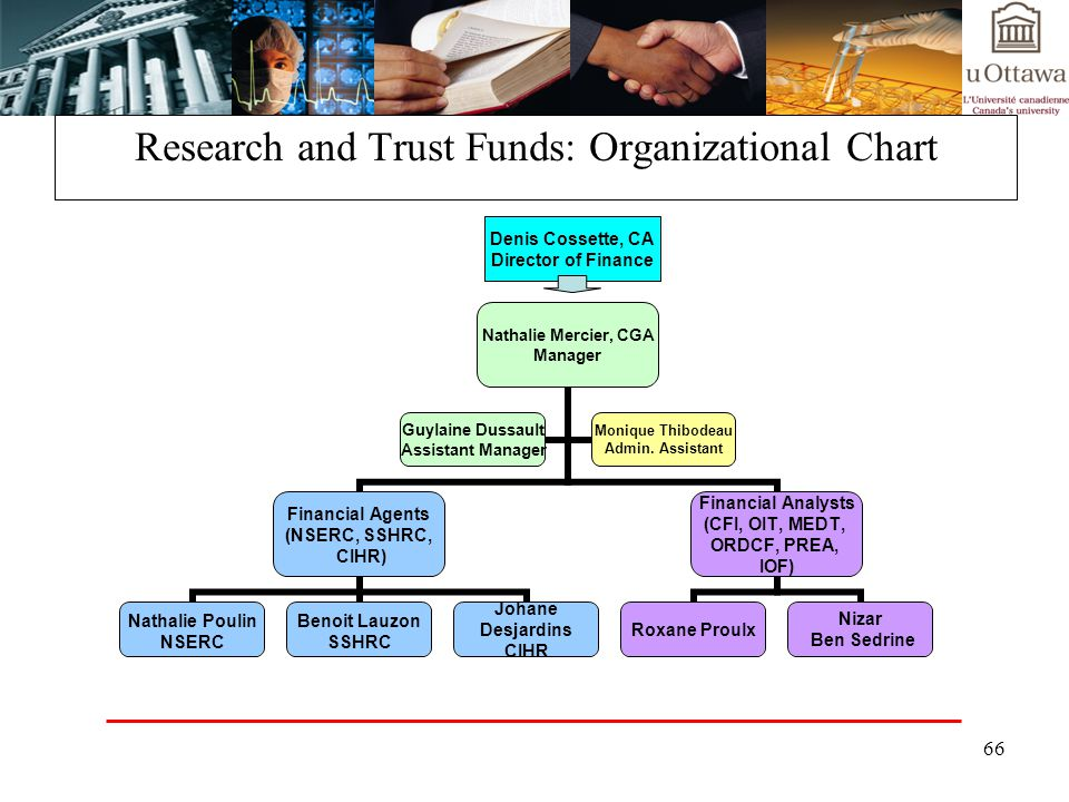 Research and Trust Funds: Organizational Chart