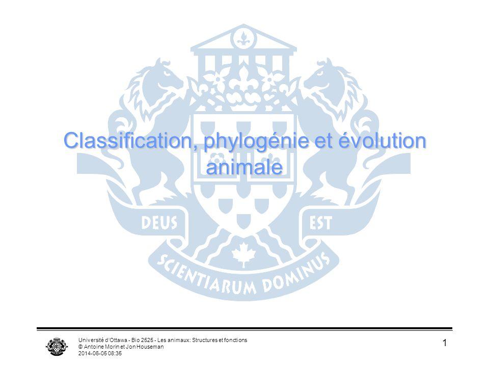 Classification, phylogénie et évolution animale