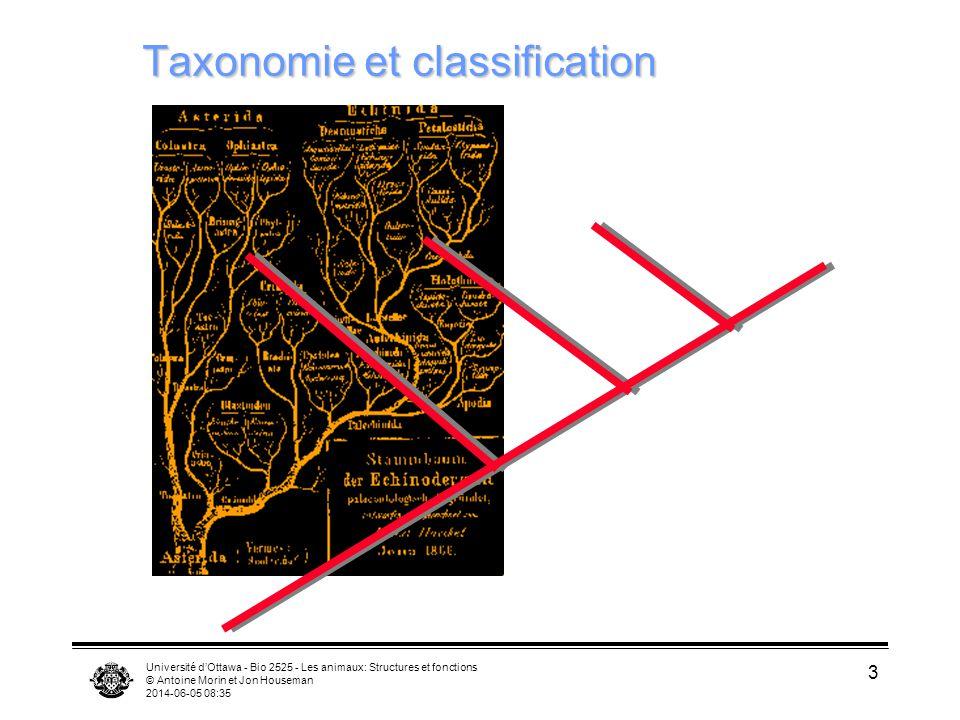 Taxonomie et classification