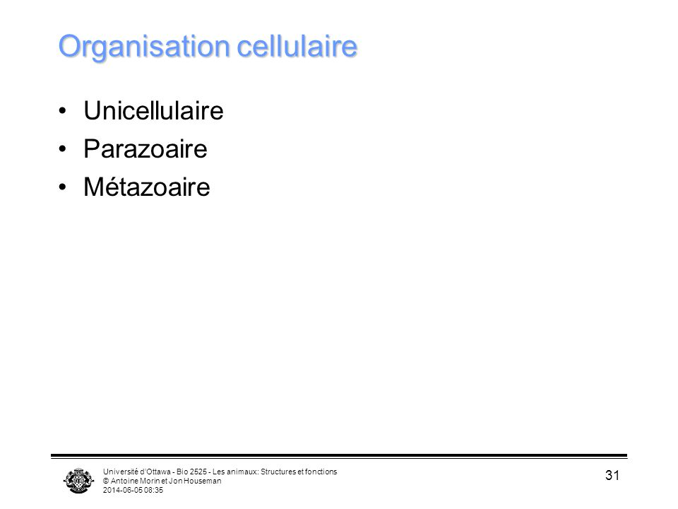 Organisation cellulaire