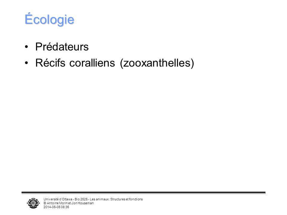 Écologie Prédateurs Récifs coralliens (zooxanthelles)