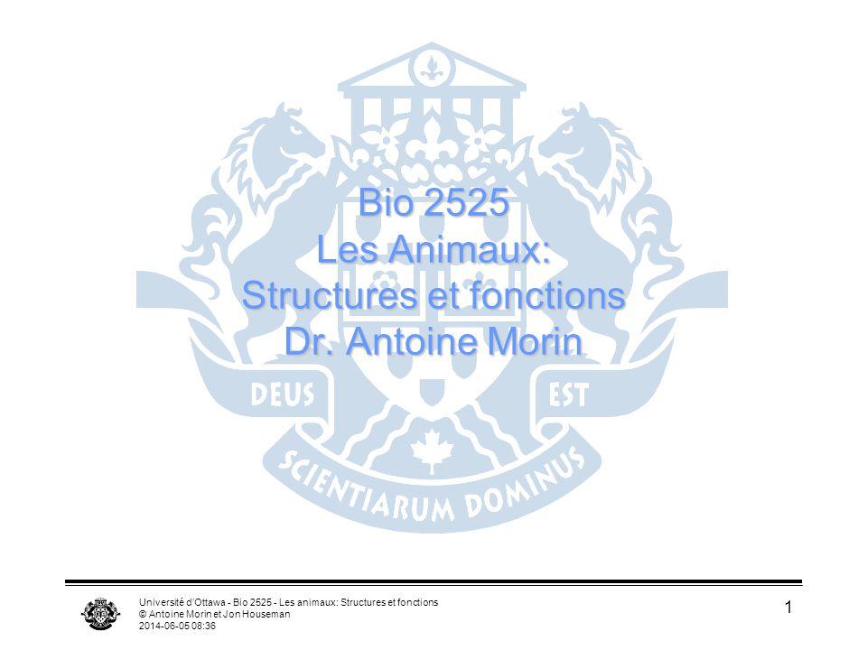 Bio 2525 Les Animaux: Structures et fonctions Dr. Antoine Morin