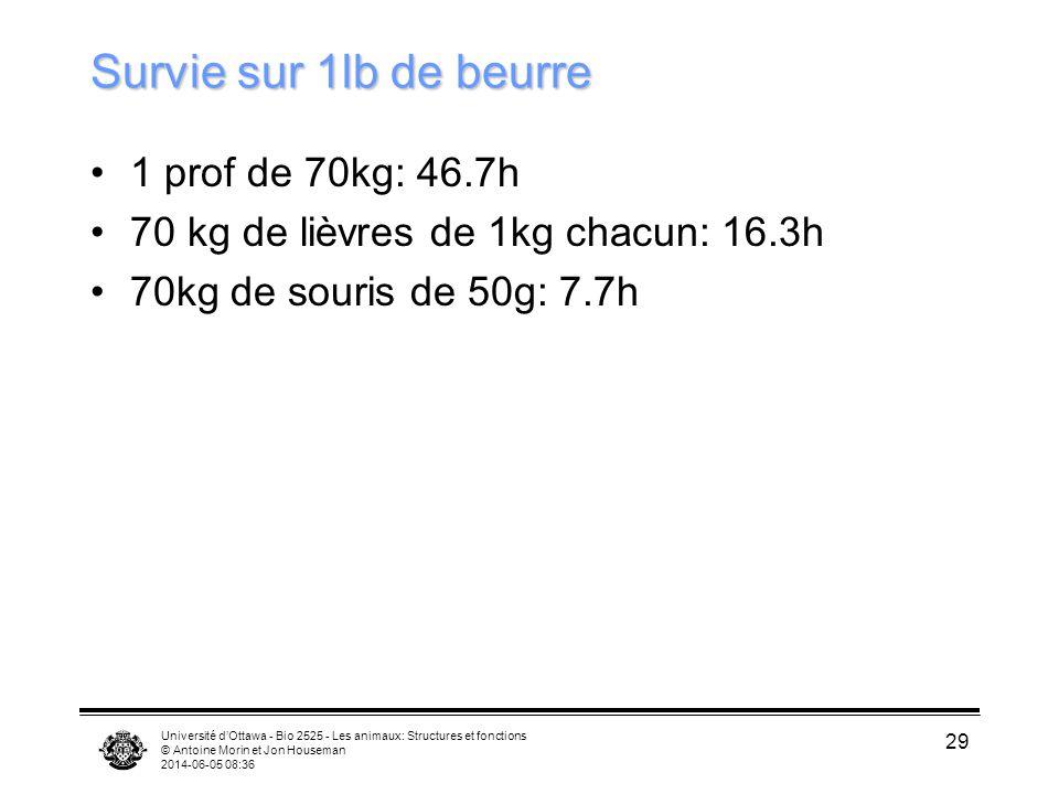 Survie sur 1lb de beurre 1 prof de 70kg: 46.7h