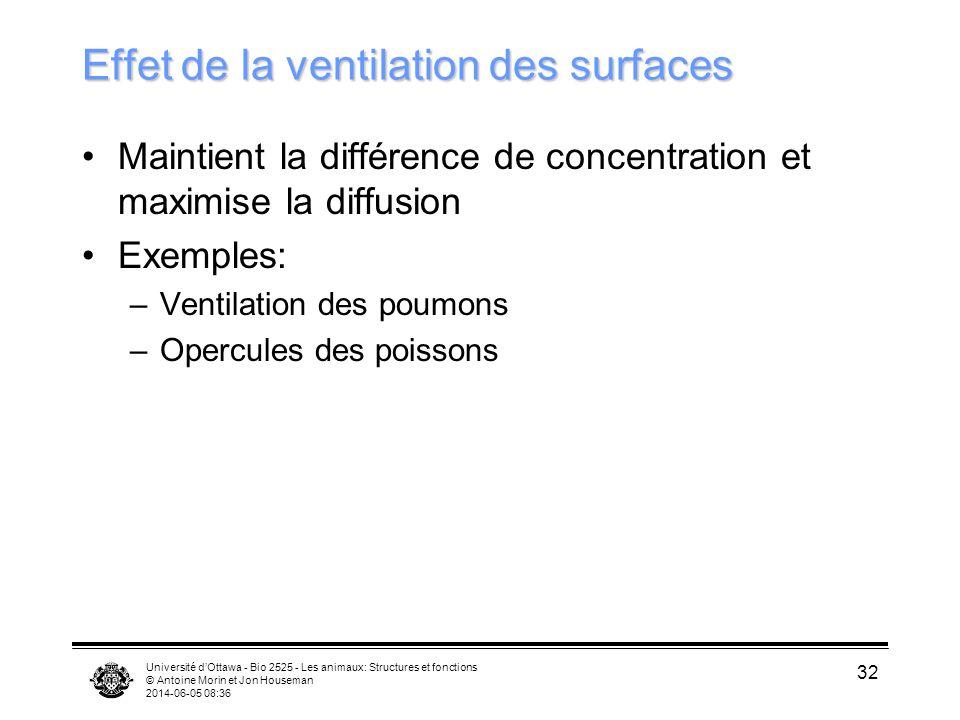 Effet de la ventilation des surfaces