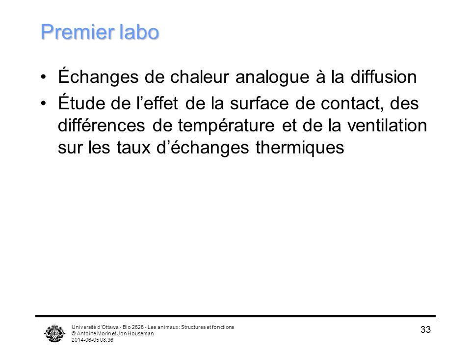 Premier labo Échanges de chaleur analogue à la diffusion
