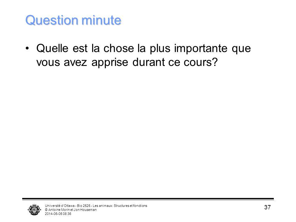Question minute Quelle est la chose la plus importante que vous avez apprise durant ce cours
