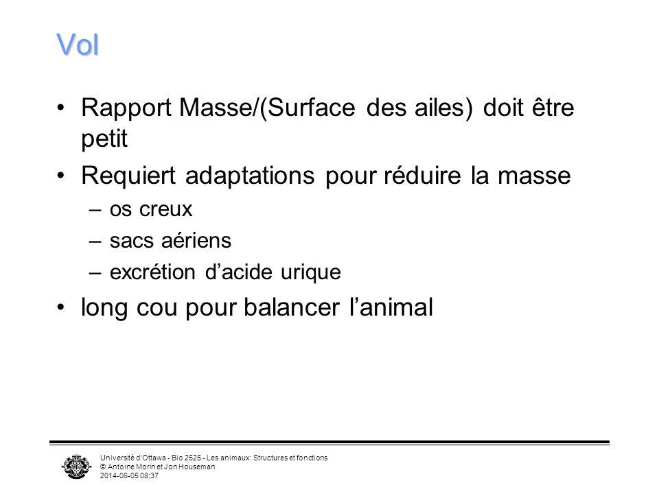 Vol Rapport Masse/(Surface des ailes) doit être petit