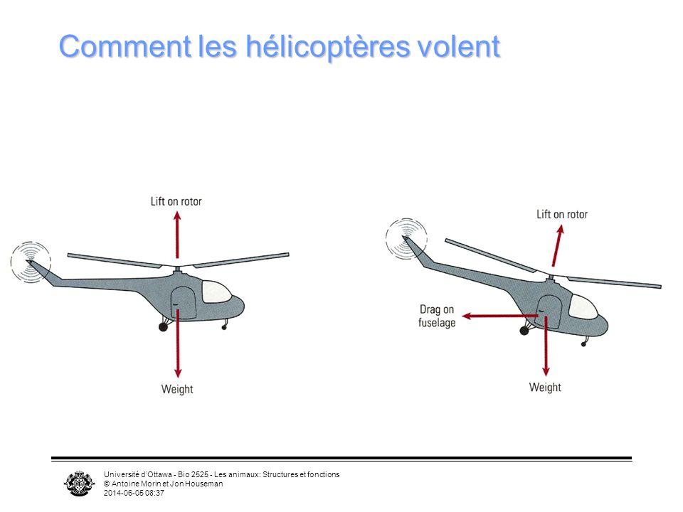 Comment les hélicoptères volent