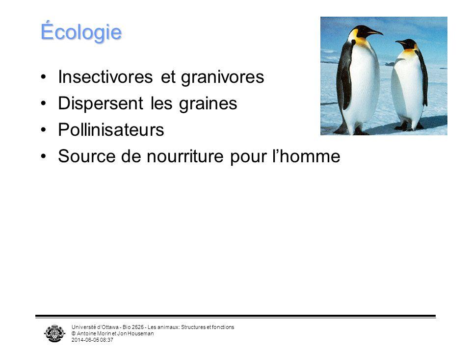 Écologie Insectivores et granivores Dispersent les graines