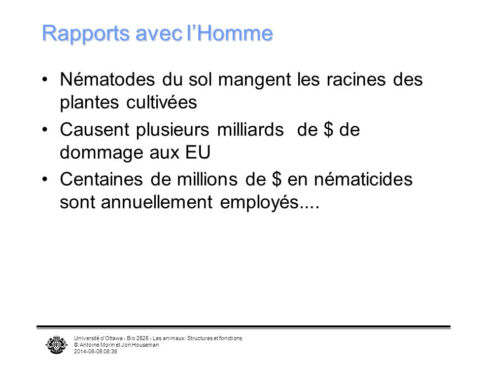 Rapports avec l'Homme Nématodes du sol mangent les racines des plantes cultivées. Causent plusieurs milliards de $ de dommage aux EU.