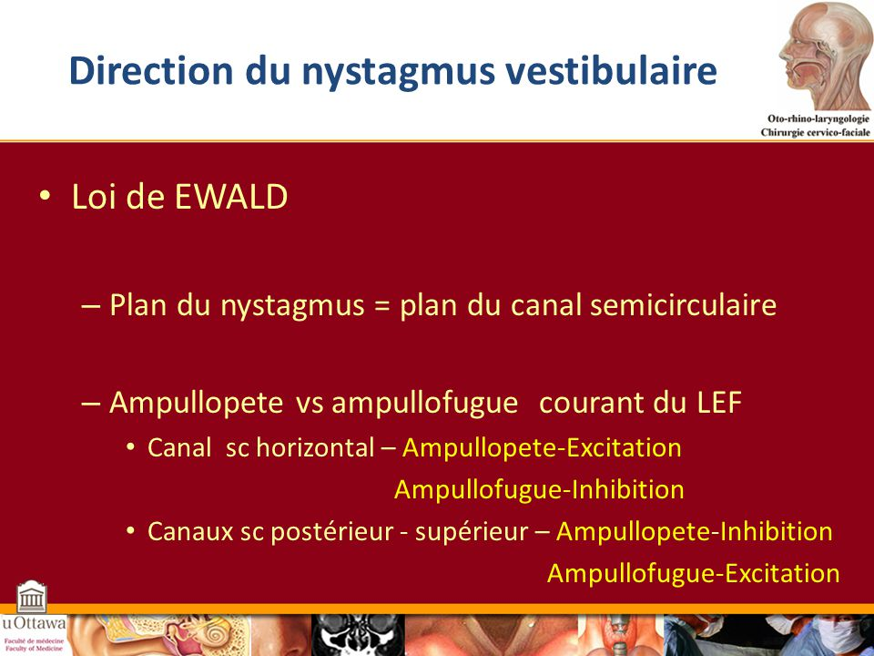 Direction du nystagmus vestibulaire