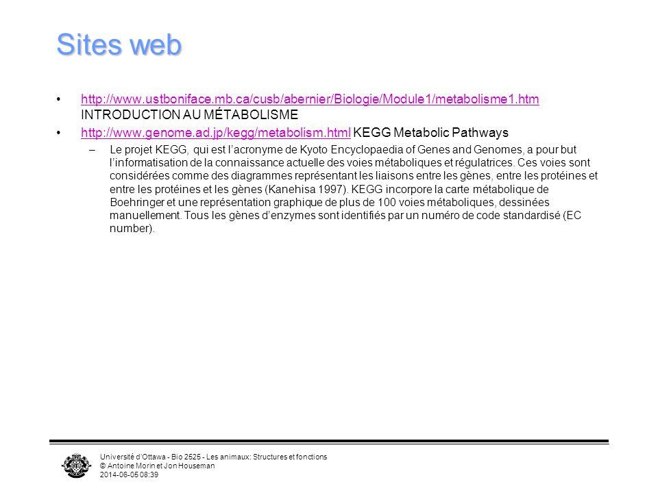 Sites web http://www.ustboniface.mb.ca/cusb/abernier/Biologie/Module1/metabolisme1.htm INTRODUCTION AU MÉTABOLISME.