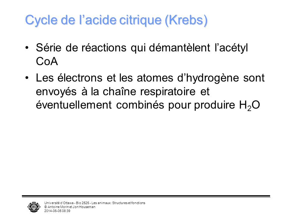 Cycle de l'acide citrique (Krebs)