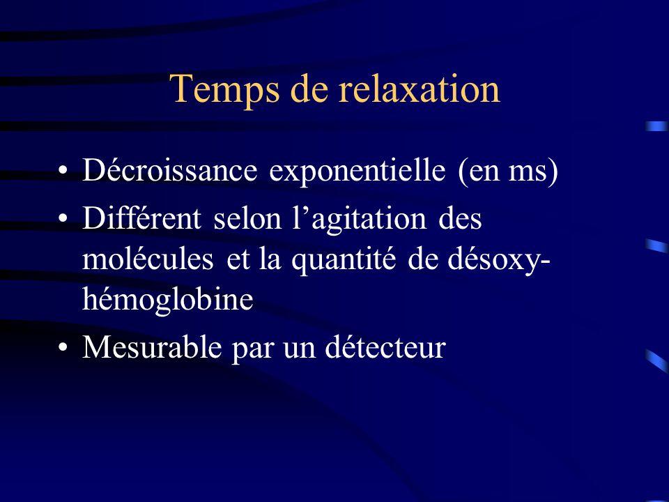 Temps de relaxation Décroissance exponentielle (en ms)