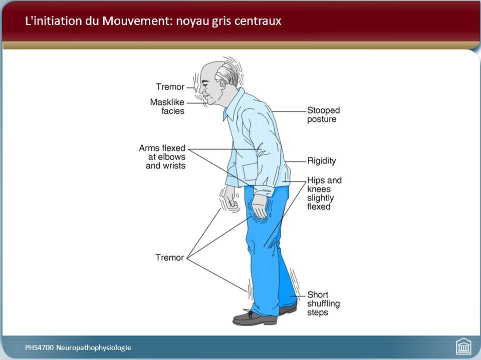 L initiation du Mouvement: noyau gris centraux