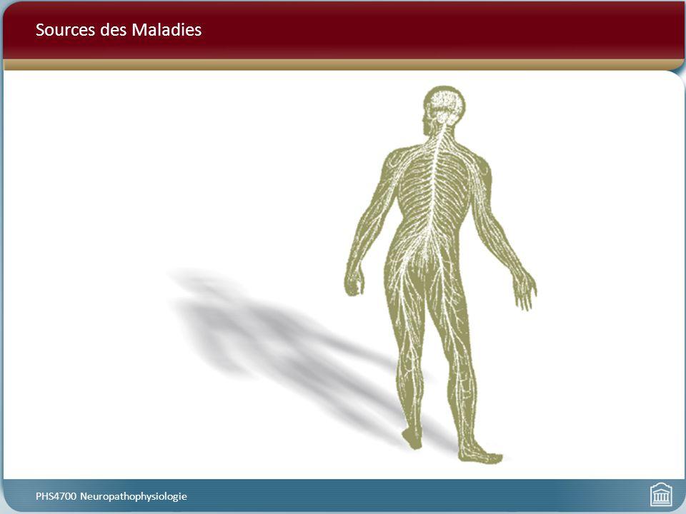 Sources des Maladies PHS4700 Neuropathophysiologie