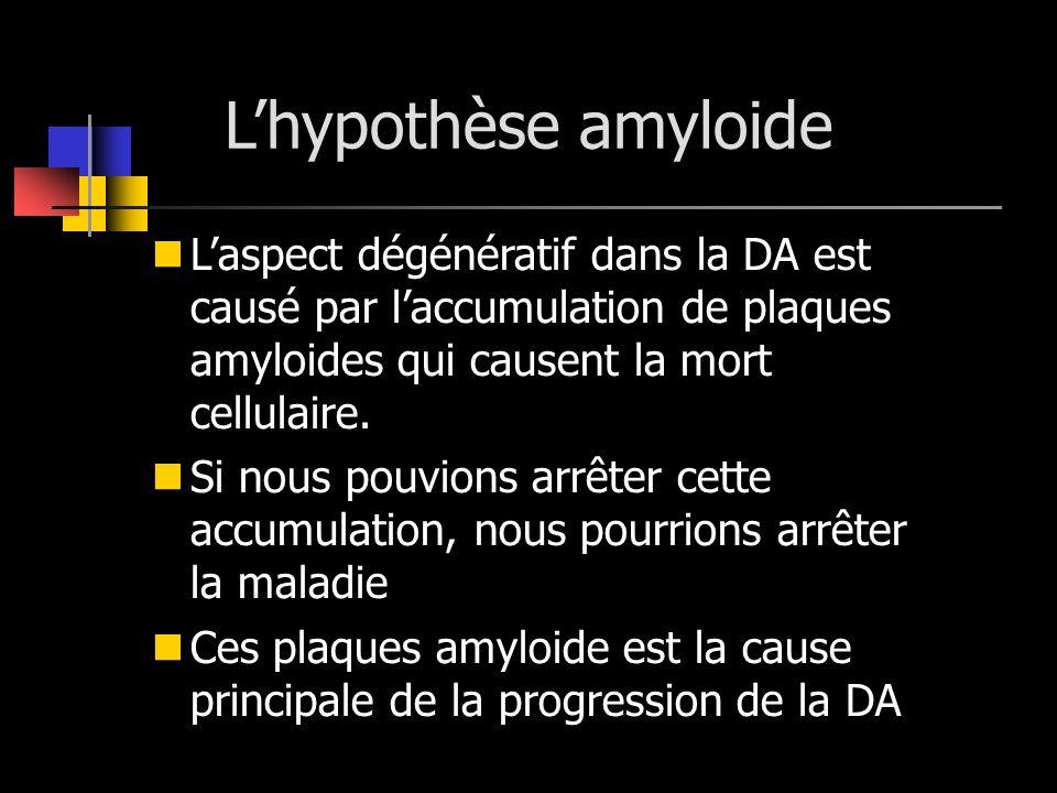 L'hypothèse amyloide L'aspect dégénératif dans la DA est causé par l'accumulation de plaques amyloides qui causent la mort cellulaire.
