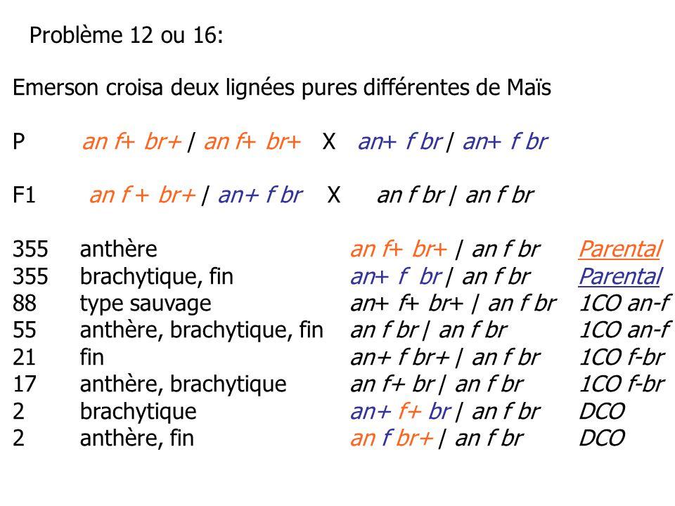 Problème 12 ou 16: Emerson croisa deux lignées pures différentes de Maïs. P an f+ br+ / an f+ br+ X an+ f br / an+ f br.