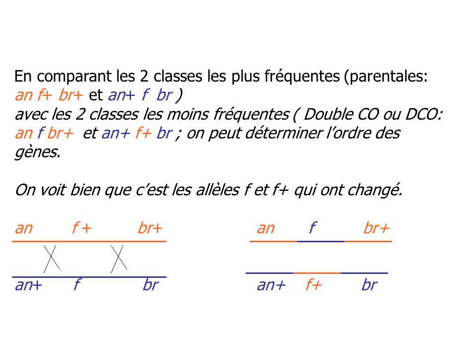 En comparant les 2 classes les plus fréquentes (parentales: an f+ br+ et an+ f br )