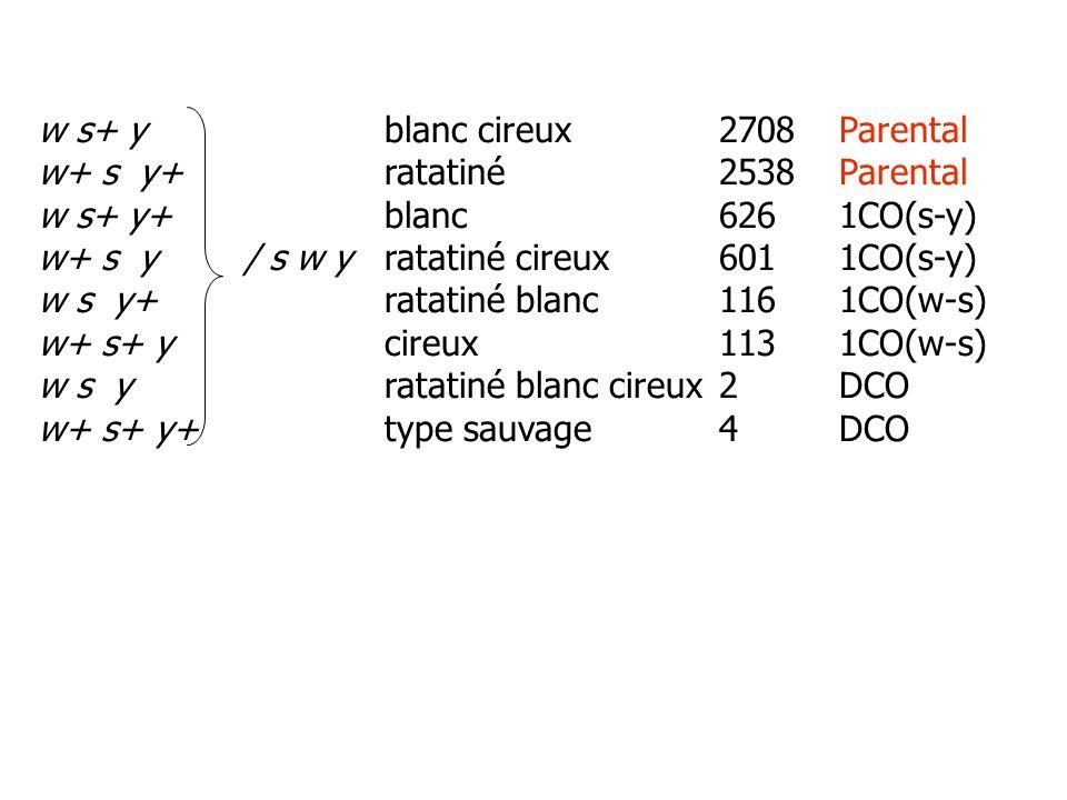 w s+ y blanc cireux 2708 Parental