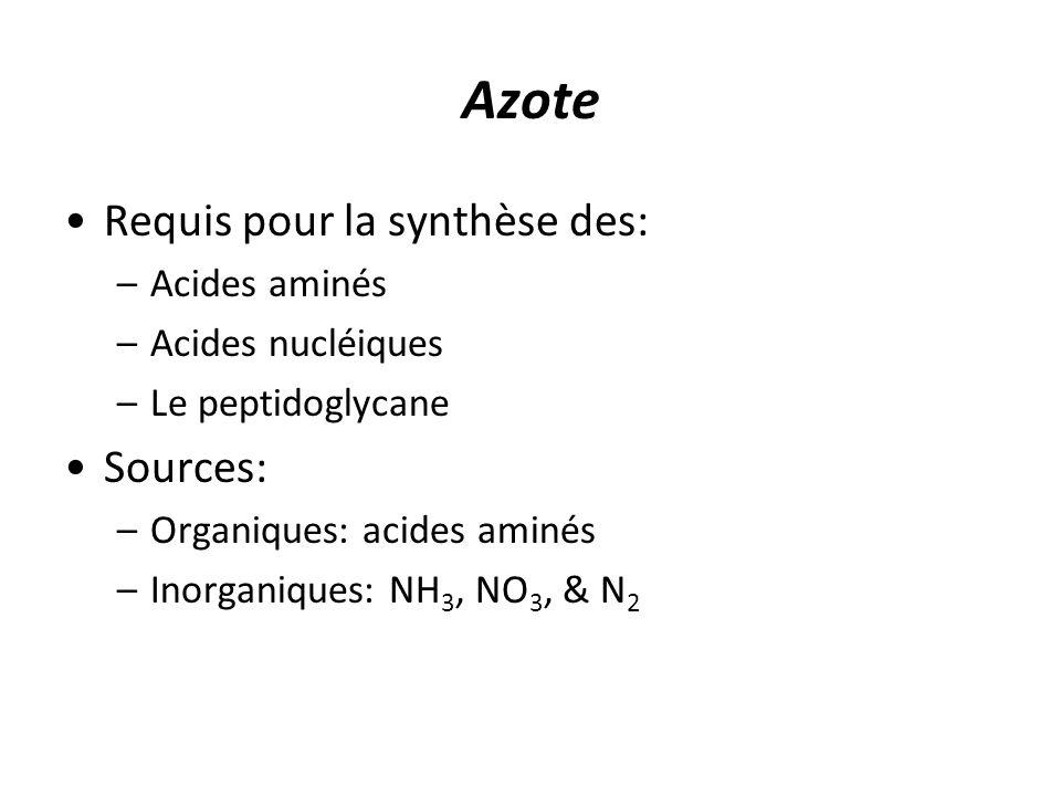 Azote Requis pour la synthèse des: Sources: Acides aminés