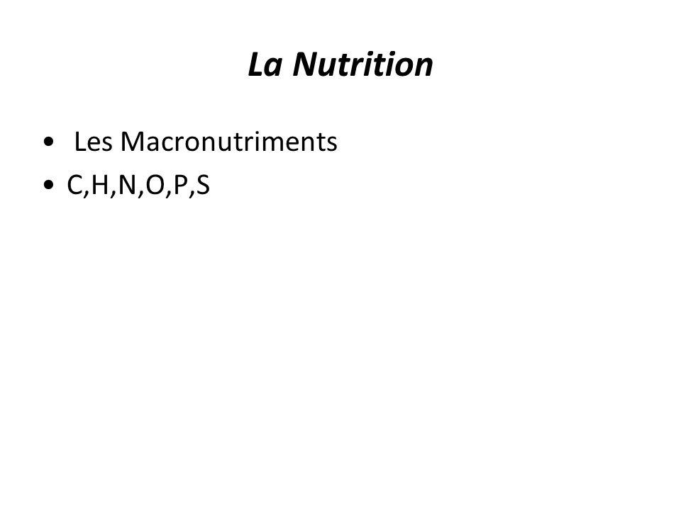 La Nutrition Les Macronutriments C,H,N,O,P,S