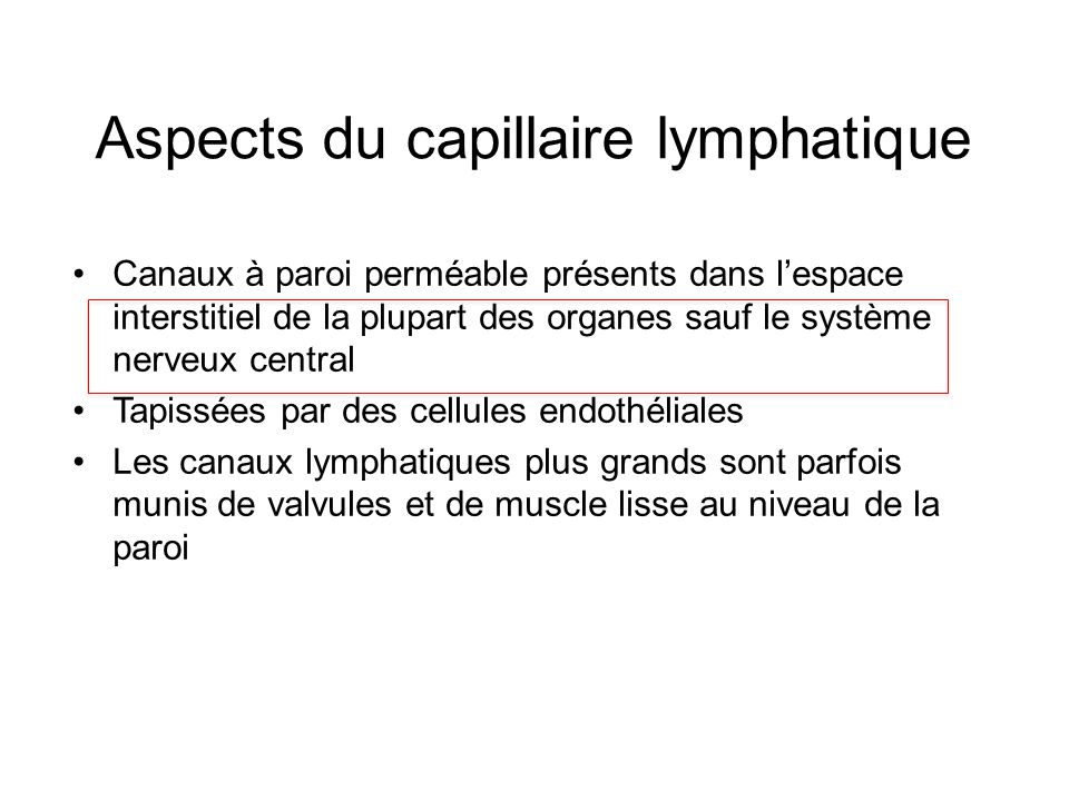 Aspects du capillaire lymphatique