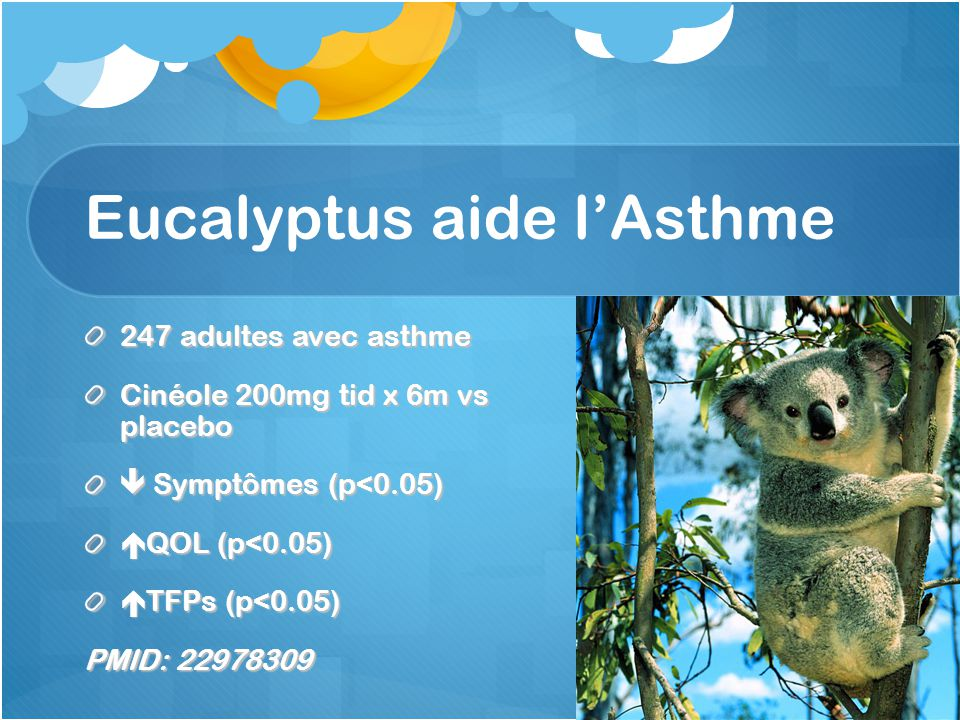 Eucalyptus aide l'Asthme