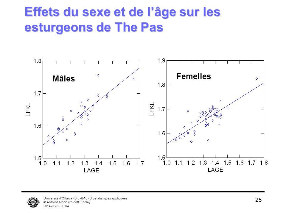 Effets du sexe et de l'âge sur les esturgeons de The Pas
