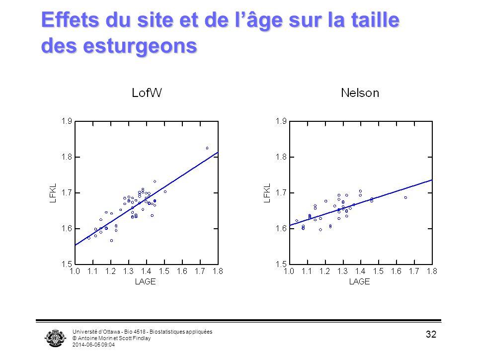 Effets du site et de l'âge sur la taille des esturgeons