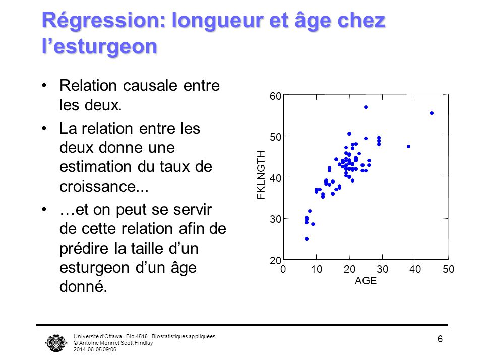 Régression: longueur et âge chez l'esturgeon