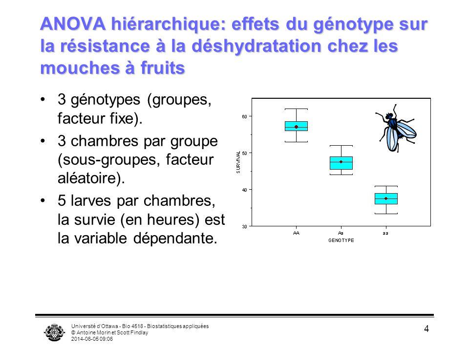 ANOVA hiérarchique: effets du génotype sur la résistance à la déshydratation chez les mouches à fruits